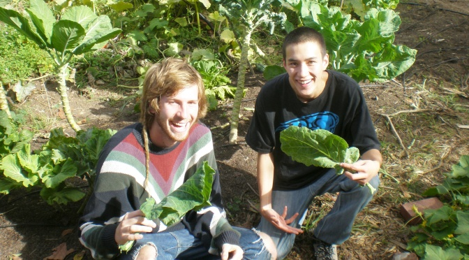 The USF Community Garden: Cultivating More Than Just Produce