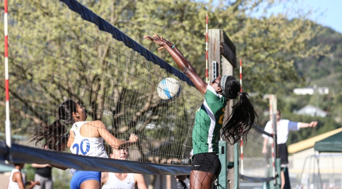 Beach Volleyball: Dons Fail to Advance at Santa Cruz